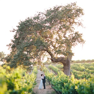 Rachel & Jason in Santa Ynez, California