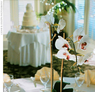 After the ceremony concluded, guests enjoyed a sunset cocktail hour on the patio before heading inside for dinner. For the reception, the club ballroom had been decorated with ivory, white, and cream hues predominating. Some tables showcased potted cymbidium orchid plants while others held floating orchids in oversize brandy glasses accented with c ...