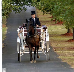 The bridesmaids arrived up the drive first, in a white, horse-drawn carriage.