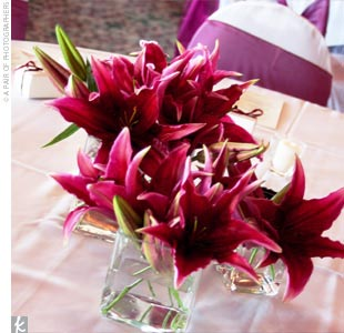 The reception tables were decorated in the wedding colors -- merlot and rose -- with square crystal vases holding a variety of single-flower arrangements: gerbera daisies, hydrangeas, Sumatra lilies, spider mums, snapdragons, English roses, and gladiolas.