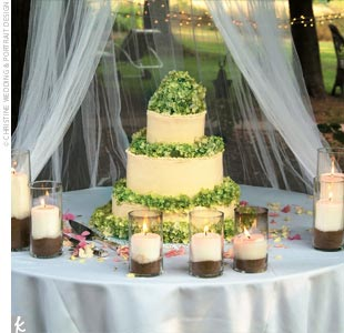 Ashley and Clint's cake was three tiers with buttercream icing and topped with fresh hydrangeas.