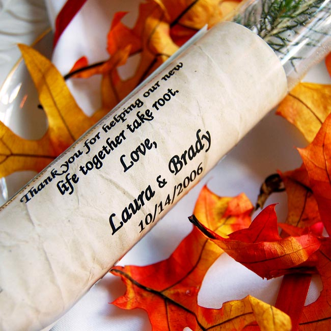 """Laura and Brady gave each guest an evergreen sapling complete with planting instructions and a personalized message that read, """"Thank you for helping our new lives take root."""""""