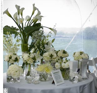 The florist used one table to showcase the various types of flowers used throughout the reception. In all, there were 15 vases that displayed the wonderful array of white flowers.