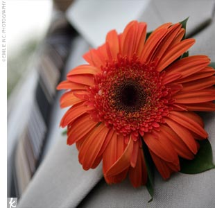 Craig's groomsmen sported dark orange gerbera daises on the lapel of their Stephen Geoffrey khaki-colored suits. Chocolate-brown and ivory ties tied the whole look together.