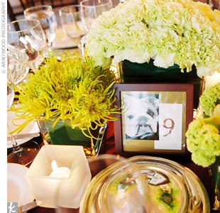 "The centerpieces at the reception featured several small vases, each featuring a single type of flower. Guests found their seats at numbered tables that also featured photos of Beth and Kenny's bulldog, Phil. ""It was our way of having Phil as a part of our wedding since he wasn't quite invited!"" Beth says."