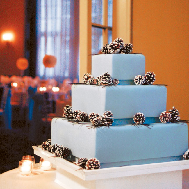 "Inspired by a cake she had seen in a magazine, Amy planned the wedding around a blue and brown color scheme accented with a pinecone motif. Fortunately, recreating the all-important cake that Amy loved turned out to be no trouble at all: ""Robin Martin from Gateaux told me she could make a cake that looked exactly like the picture,"" Amy says."