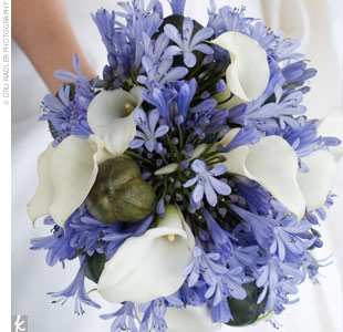 Liz carried a bouquet of agapanthuses, calla lilies, and brown pods. Her maids carried the same bouquets without the calla lilies.