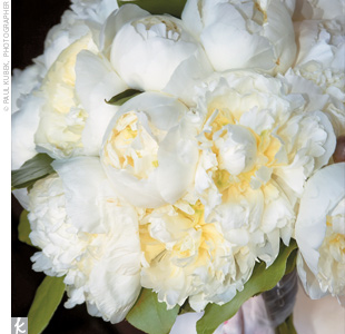 Katie carried a white, lush bouquet of white peonies.