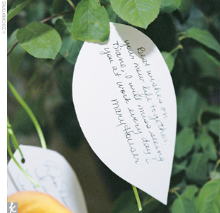 Diane used a leaf theme for the reception decor. Instead of a guest book, she cut out paper leaves and had guests write their best wishes and then pin the notes to a live tree in the entryway. Later, she created a handmade book filled with the leaf notes as a remembrance of the day.