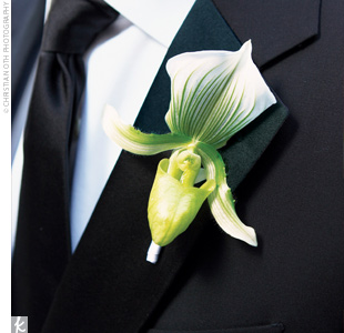 Jeff wore a green Lady's Slipper orchid boutonniere with an ivory ribbon to match the bride's dress. Each groomsman wore a miniature green cymbidium orchid finished with a black ribbon.