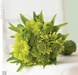 Carrying a bright green monochromatic bouquet down the aisle is a beautiful contrast to an all-white ensemble. Structural greenery, such as mini green santini mums and green spider mums create an earthy yet casually sophisticated style.