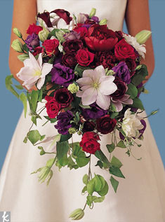 Trailing over a bride's arms, a cascade offers a visual impact of abundance. This example features purple lisianthus, deep burgundy peonies, dark purple calla lilies, red roses, and lavender passion flower.
