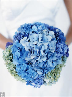 Blue, purple and green hydrangea clusters make for a fluffy puff of fabulous style.
