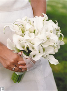 Simple white calla lilies look modern with their touches of greens on the ends.