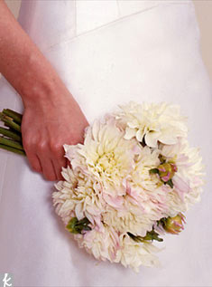 Cream and white dahlias look soft yet sophisticated.