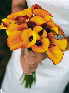 This sunny bunch is a simple bouquet made of golden yellow calla lilies.