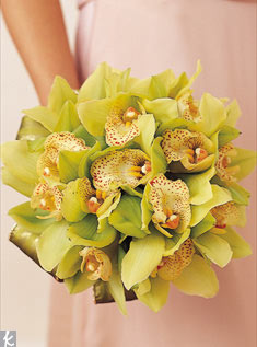 This round bouquet of chartreuse cymbidium orchids really stands out against the color of the dress.