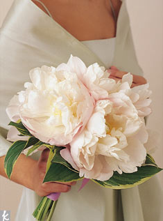 Huge pale-pink peonies with a collar of hosta leaves are a lovely complement to the pale sage color of a bridesmaid's dress.