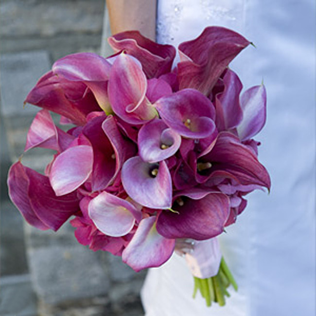 Lauren's hand-tied bouquet was filled with two dozen calla lilies.