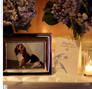 The guest book was topped with a row of Venetian glass vases filled with blue hydrangeas. Photos of the couple's dogs -- dressed in wedding attire -- added a lighthearted touch to the English Manor theme.