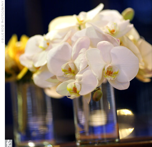 Glass cylinders overflowing with white orchids decorated each table.