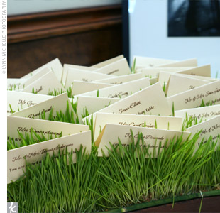 Julie and Eric displayed their escort cards on a bed of wheatgrass. The cards were ivory with lime and chocolate writing and included the couple's monogram on the back.