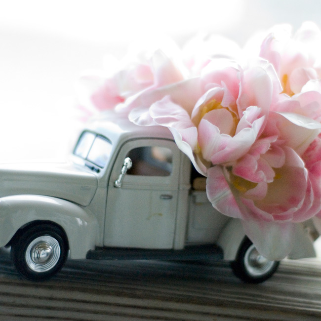 Rather than a ring pillow, the bride's cousin, Drew, carried an antique toy car with the bed filled with flowers and two faux rings.