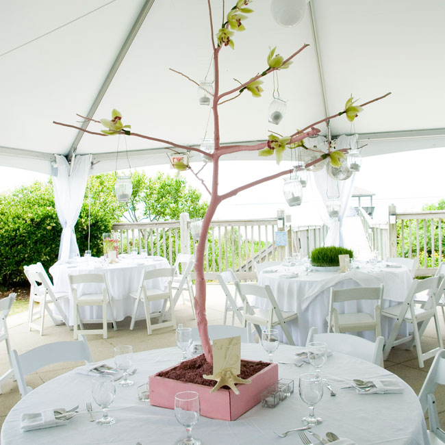 Short centerpieces of green grass provided a pop of color, while tall branches with hanging votives and green orchids provided height and drama.