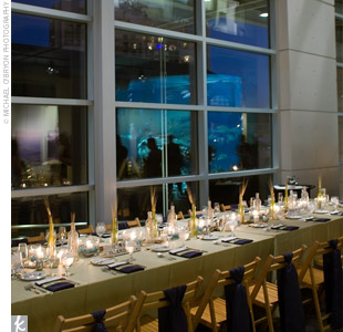 Long tables set for 12 guests were covered in neutral linens and lined the edge of the aquarium windows.