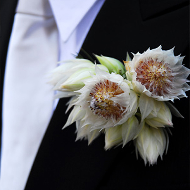 Jon's boutonniere was comprised of blushing bride in a blush color.