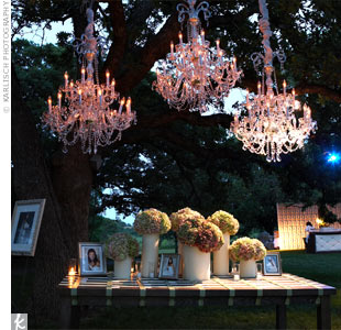 The escort card display was one of the bride's favorite parts of the decor. The cards sat beneath a large tree with three Baccarat crystal chandeliers hanging from the branches.
