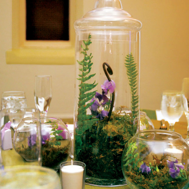 The centerpieces were designed to bring the great outdoors into the space. Some of the tables boasted miniature terrariums filled with moss, ferns, fiddleheads, and purple sweet pea.