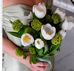 Each of the bridesmaids held bouquets of white tulips and green viburnum tied with green organza.