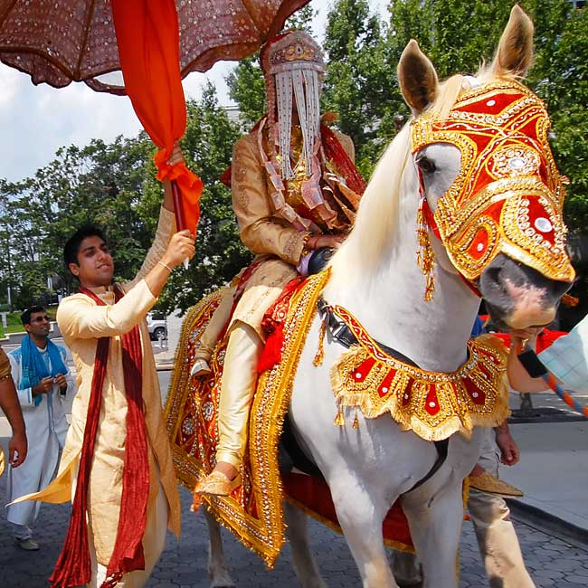 The groom rode to the wedding on a white horse dressed in the customary red and gold wedding colors.