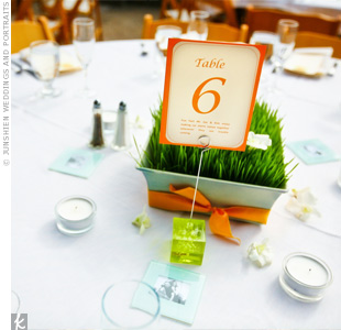 Each table card carried a fun fact about Kimberly and Joe and was placed in a bright green holder. Guests enjoyed taking a peek at each fact during the reception.