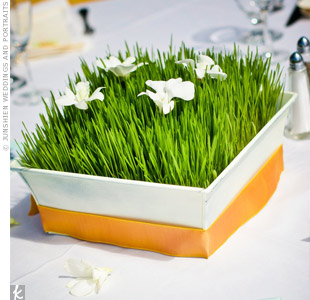 During the reception, the happy couple delighted guests by bringing the outdoors in. Each table was decorated with a white box filled with wheatgrass and white orchids.