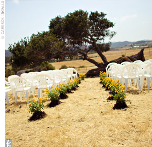 Tara and Mitch were married in front of a falling oak tree on which they hung two chandeliers. The ranch and barn are set on 700 acres between two vineyards.