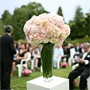 Pink Hydrangeas Wedding Ceremony
