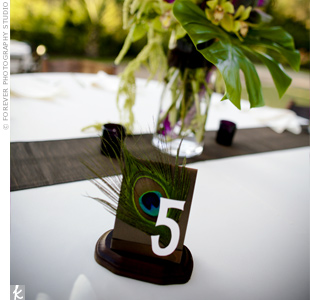 Peacock Feather Wedding Table Number