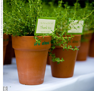 Thyme plants, a nod to Ann-Marie's love of gardening, served not only as escort cards, but also as favors for guests to take home.
