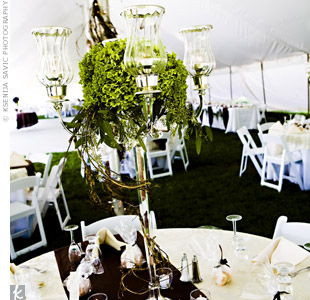 On half of the reception tables, tall candelabras were topped with green hydrangeas. The seeded eucalyptus and honeysuckle vines, which were wrapped around the bases, played up wedding's the farm setting.