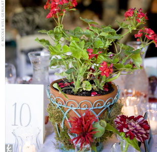 Kelsey's grandparents actually raised the 15 potted red geraniums for the rehearsal dinner table centerpieces. The couple sent the blooms home with family at the end of the evening.