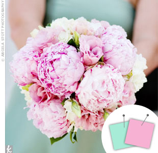Pink + Light Blue