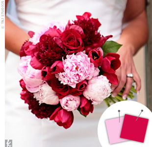 Light Pink + Fuchsia