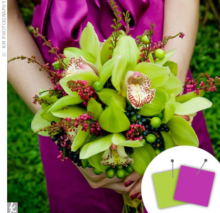 Purple + Lime