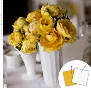 White + Golden Yellow