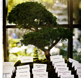 To incorporate the wedding's outdoor location into the escort card display, the couple bought a mini bonsai tree from a Japanese gardener and placed the escort cards on moss in front of it.