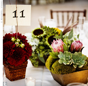 So guests would see new things when they mingled at the other tables, Dena and Adam varied the centerpieces. They used protea, succulents, moss, dahlias and green sunflowers.