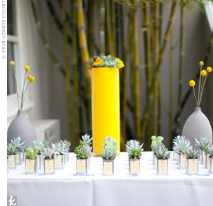Kelly and Chris assembled pots of mini succulents that doubled as favors. To pick up the wedding palette, they attached yellow cards.