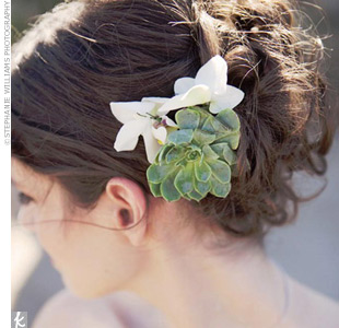 A small succulent looks both sculptural and elegant in this bride's hair. Many blooms will wilt as the day wears on, but these desert flowers delight into the night.